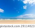ท้องฟ้าเป็นสีฟ้า,มหาสมุทร,หาดทราย 29114023