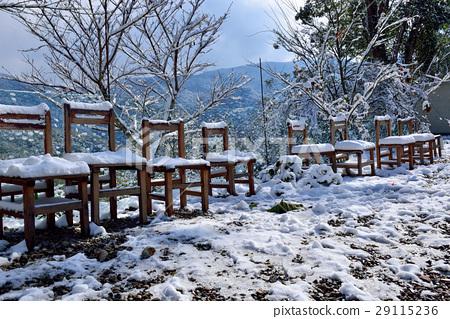 雪景,雪地,雪,寒冷,椅子 29115236