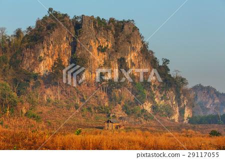 Northern Thailand 29117055