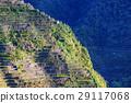 Rice terraces 29117068