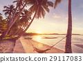 Tropical beach 29117083