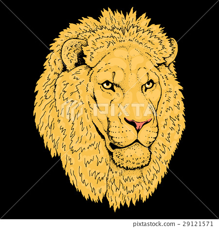 Beautiful lion artwork. Detailed.African predator. 29121571