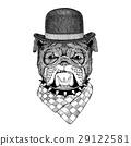 animal, bulldog, logo 29122581