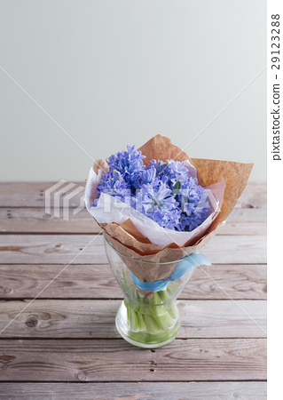 blue hyacinth In a glass vase on wooden table and 29123288