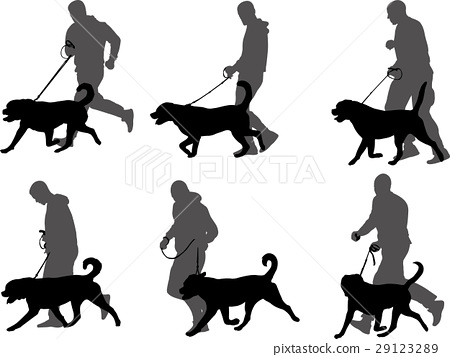 man training dog silhouettes 29123289