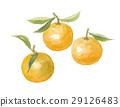 orange for generations 29126483