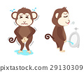 Monkey  need a pee and standing peeing 29130309