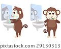 Monkey wash face and brush teeth at bathroom. 29130313