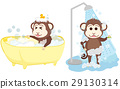 Monkey shower and bathe at bathroom. 29130314