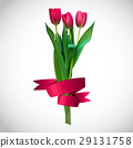 Realistic Vector Illustration Colorful Tulips 29131758