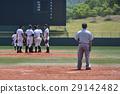 棒球 高中棒球 人 29142482