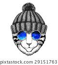 动物 猫 猫咪 29151763