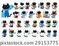 貓 貓咪 小貓 29153775