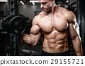 锻炼 哑铃 健身房 29155721