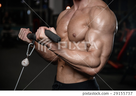 young man train in gym sexy caucasian man 29155737