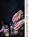 Lilac lemonade water with lemon 29156823