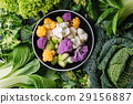 Green salads, cabbage, colorful veggies 29156887