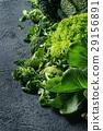 cabbage salad green 29156891