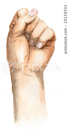 왼손 주먹 29158502