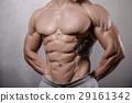 腹部 肚子 腹部的 29161342