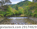 ฤดูใบไม้ร่วง,ชนบท,เกียวโต 29174829