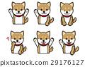 柴犬 叢林犬 面部表情 29176127
