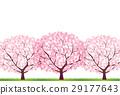 벚꽃 29177643