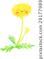 蒲公英 花朵 花 29177989