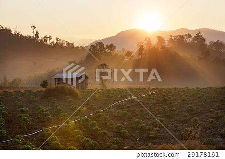 Northern Thailand 29178161