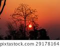 Northern Thailand 29178164