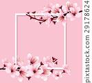 sakura, blossom, vector 29178624