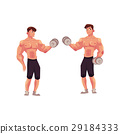 bodybuilder, vector, two 29184333