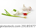 Soft white rind cheese 29185977