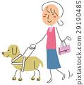 seeing‐eye dog, female, lady 29190485