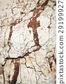 white limestone clay soil 29199927