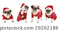 four pugs as Santa Claus 29202186