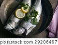 trout 29206497