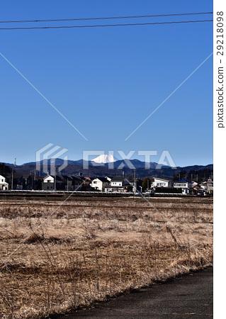 Morning view of Mt. Fuji winter from Imaji Imazu Mizuka paddy field 29218098