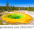 Morning Glory Pool geyser ,Yellowstone np. 29223427