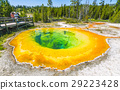 Morning Glory Pool geyser ,Yellowstone np. 29223428