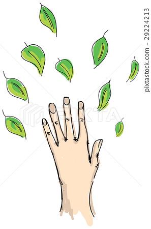 Drawn human hand 29224213