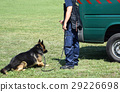 Police man with his dog 29226698