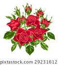 玫瑰 玫瑰花 紅色 29231612