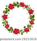 玫瑰 玫瑰花 紅色 29231616