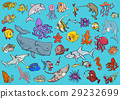 sea life animals cartoon set 29232699