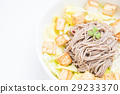 soba salad with tfried tofu 29233370