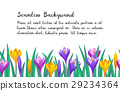 Floral seamless background. 29234364