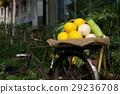農家生活展示 29236708