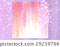 Spring background with blooming wisteria 29239766
