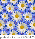 Seamless pattern flowers 29240475